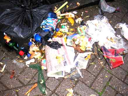 Rubbish strewn across the pavement after a bin bag has been breached by seagulls